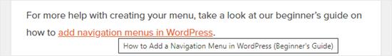 title of link wordpress netking