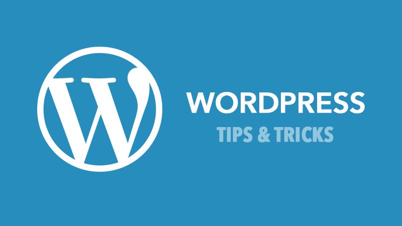 wordpress tips netking